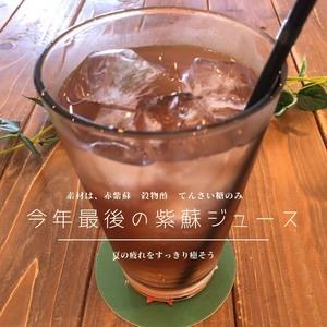 kotocafe9月12日(土)~9月26日(土)までのお席空き状況&イベント情報